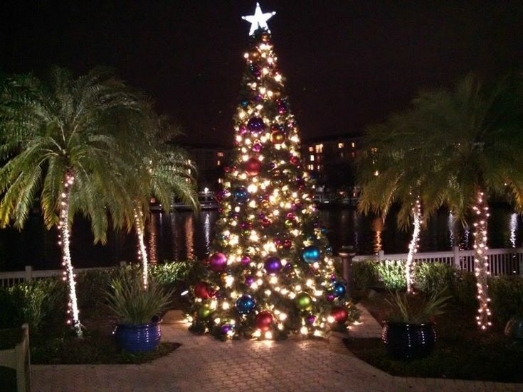 Miller Lights has outdoor decorations other than trees and wreaths. This is an image of some of our other Christmas outdoor decorations. We love coming up with ideas for the trees, swags and other displays. Click on pin to see more of our work.