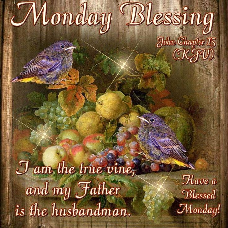 Monday Blessing. John Chapter 15-Have a Blessed Monday!