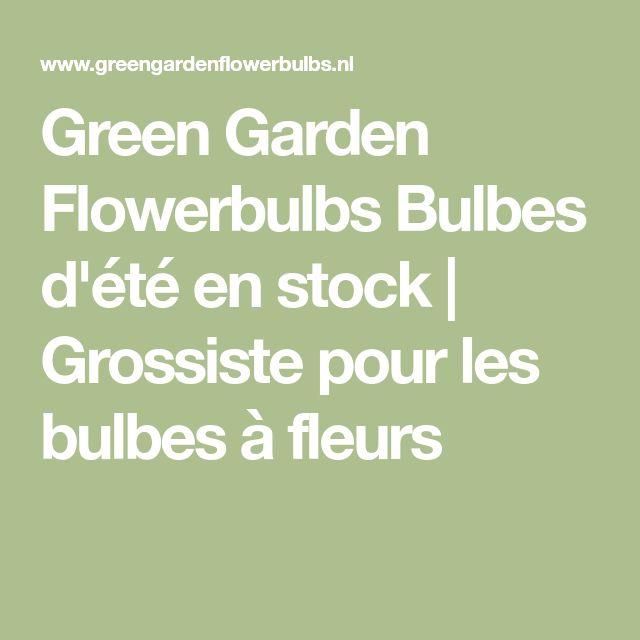 Green Garden Flowerbulbs Bulbes d'été en stock | Grossiste pour les bulbes à fleurs #bulbgardening
