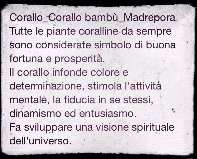 Corallo e Madrepora
