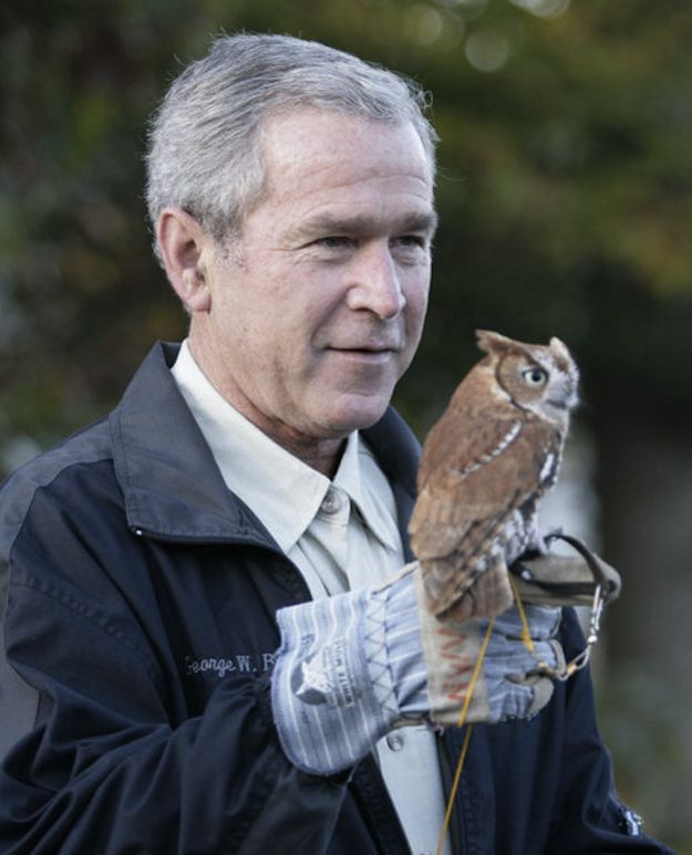 15 Reasons George W. Bush Should Come Work For BuzzFeed Animals