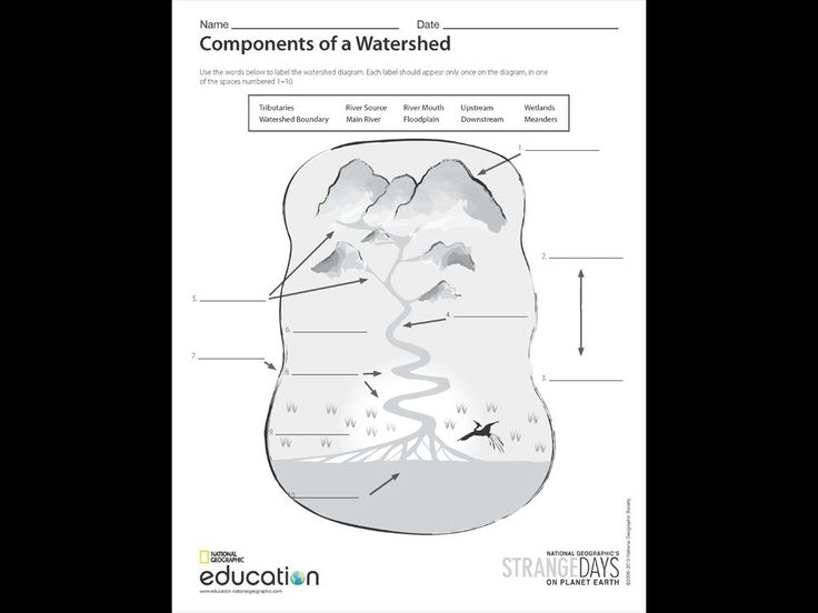 In Your Watershed Models Activities And Student