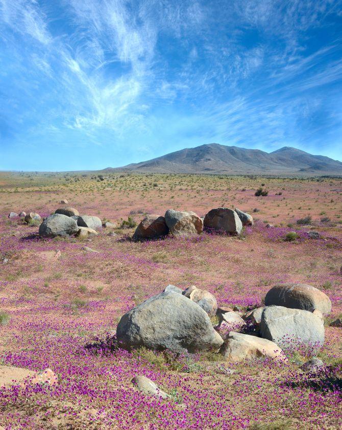 Le Plus Grand Désert Du Monde : grand, désert, monde, Grands, Spectaculaires, Déserts, Monde