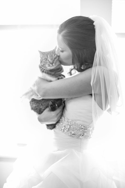 Scott & Ashley Photo By Britton Reynolds Photography bride and cat pet wedding picture kitten