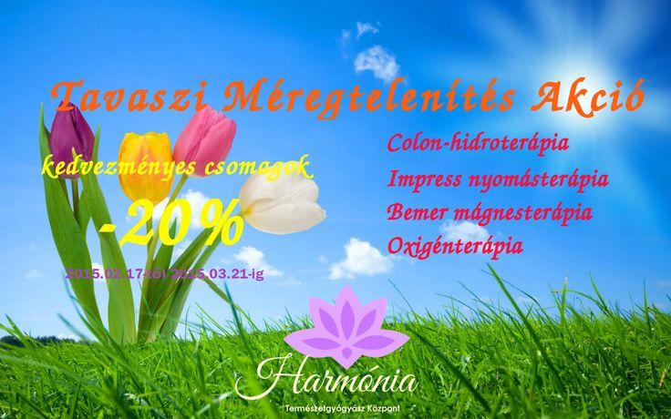 Tavaszi méregtelenítés akció. Most 20% kedvezménnyel veheti igénybe csomagjainkat. AZ AKCIÓ MÁRCIUS 31-IG ÉRVÉNYES!  http://harmonia-wellness.hu/akciok/