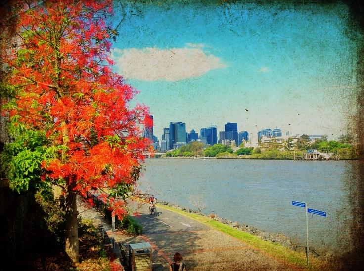Spring into summer, November 2012