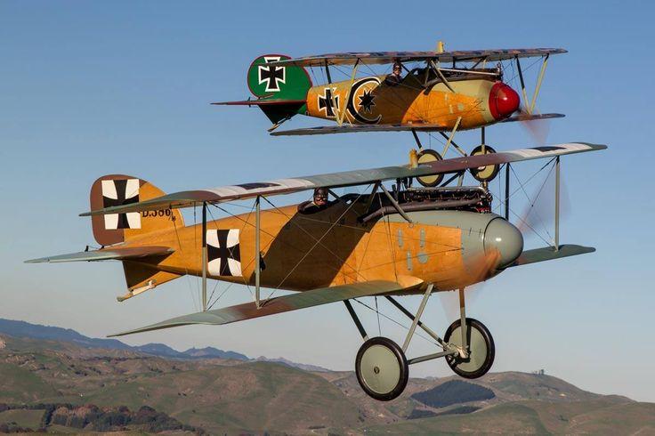 A pair of Albatros's, D.II and D.Va