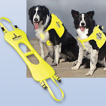 Dog Life Vests!  Helps the #dog stay #safe while having fun in the #water!