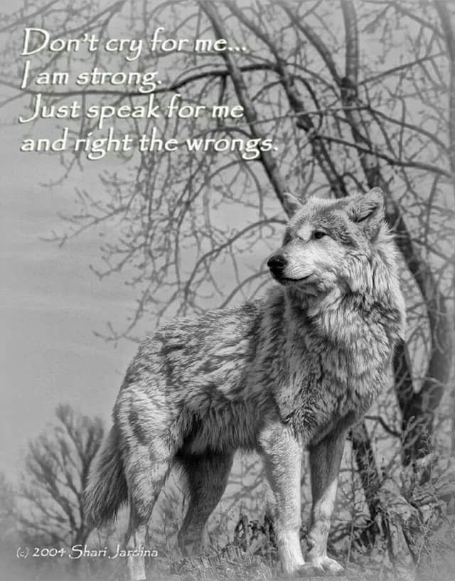 #wolf #wolves #quotes #speck for those that cannot #wrongs to #rights