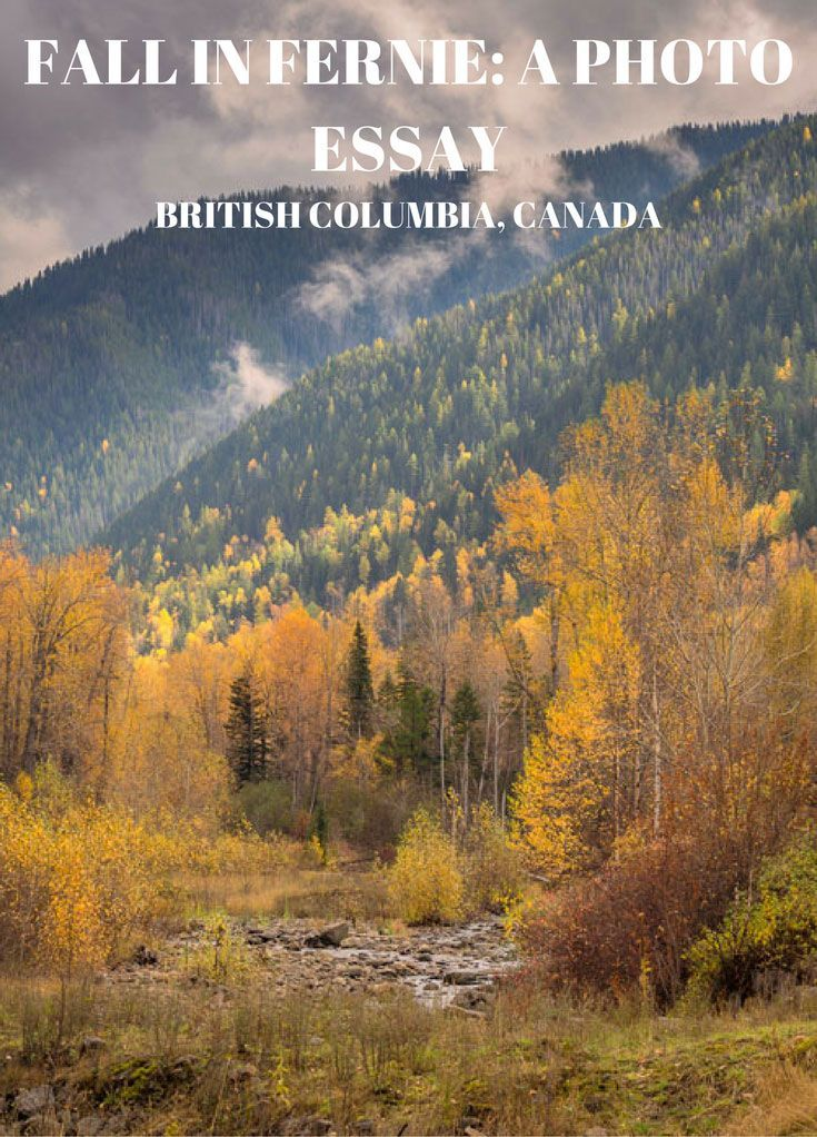 Welcome to part II of my Fall in Fernie, British Columbia photo essay. If you haven't seen part I, you can do so here. Remember to share, like, pin etc.