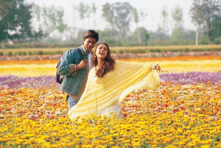 I'm still not sick of watching bollywood lovers frolic through fields of flowers.Veer-Zaara