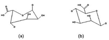 Two monomers of alginic acid (a) L-guluronic acid (b) D-mannuronic acid