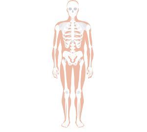 the 25+ best human skeleton labeled ideas on pinterest | human, Skeleton