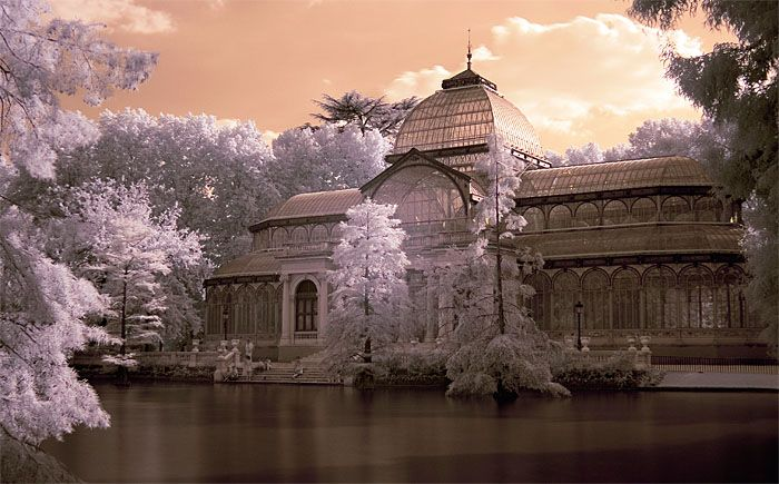 What a gorgeous picture of The Palacio de Crista in Retiro Park in central Madrid #retiro #park #madrid