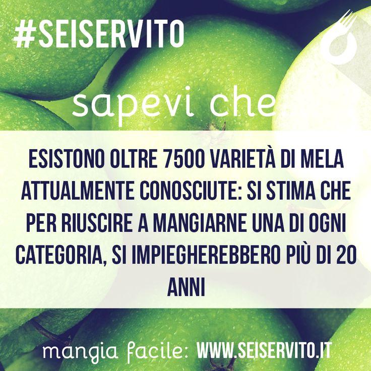 Esistono oltre 7500 varietà di mela... #SeiServito #MangiaFacile www.seiservito.it