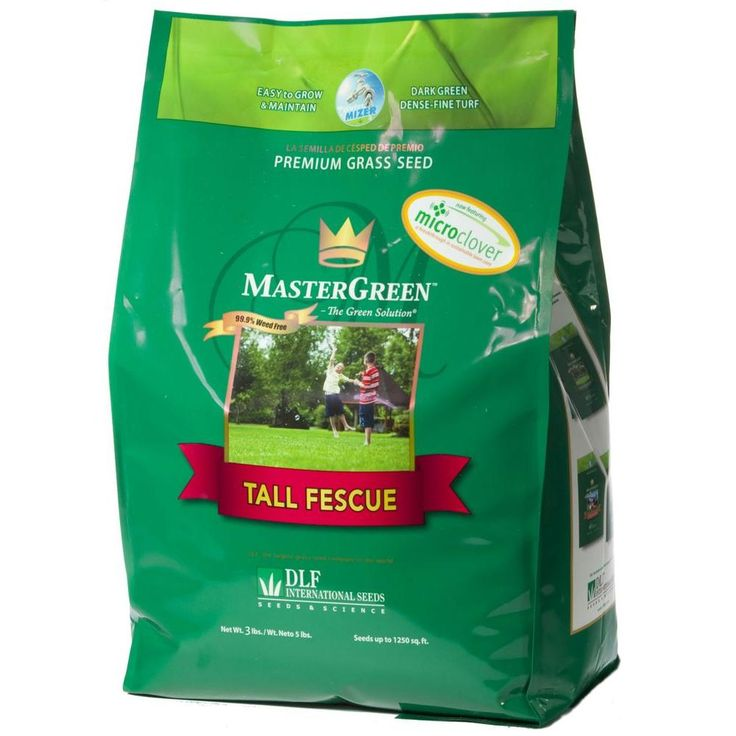 3 lb tall fescue grass seed with micro clover for Mosquito donuts
