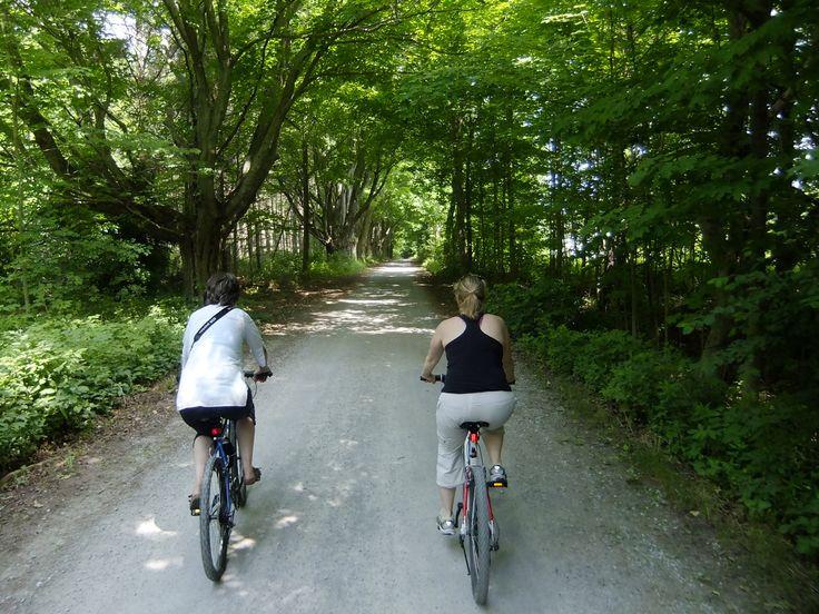 #Cycling at Presqu'ile Provincial Park in Brighton, #Ontario. http://www.northumberlandtourism.com/en/outdoor-adventure/Cycling.asp