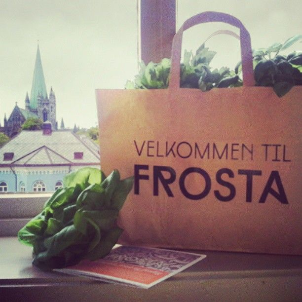 Design profile for Frosta municipality, at the Food Festival in Trondheim city.