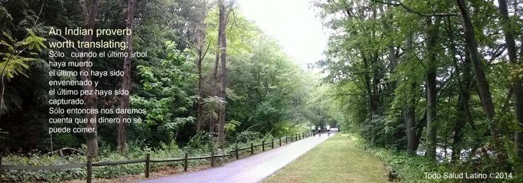 Bike path, Cumberland, RI