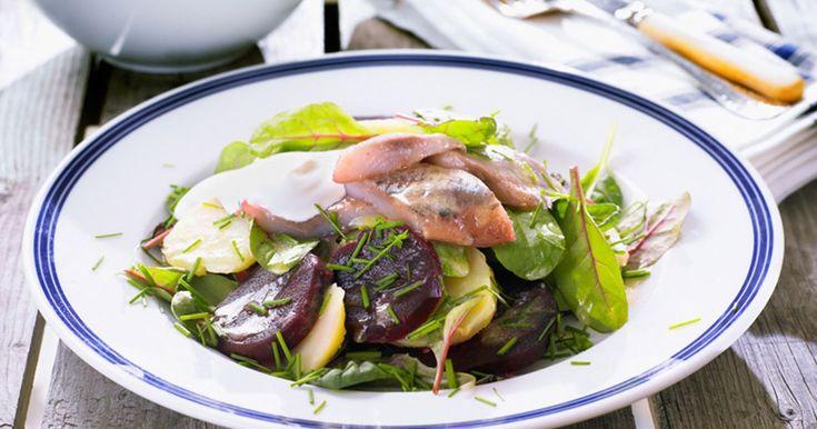 Somrig sallad med matjessill ger en perfekt och mättande lunch. Ett alternativ till klassiska sill och potatis.