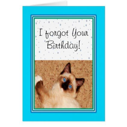 Ragdoll Kitten Happy Belated Birthday Card - birthday gifts party celebration custom gift ideas diy