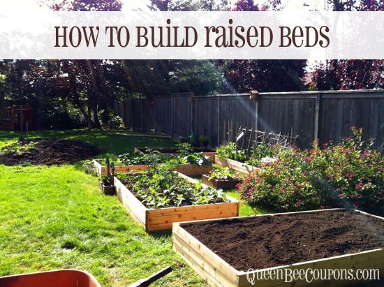 best 25 cheap raised garden beds ideas on pinterest cheap garden ideas diy raised garden beds and easy garden