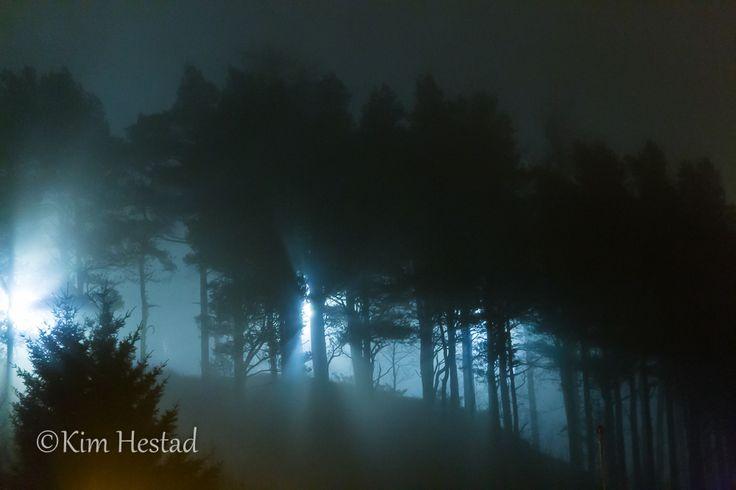 Veldig mange går og venter på den perfekte stormen, står opp grytidlig eller virrer hvileløst rundt i skogen rundt solnedgang for å få tatt de beste bildene. Alle vi andre som har andre ting (jobb,...
