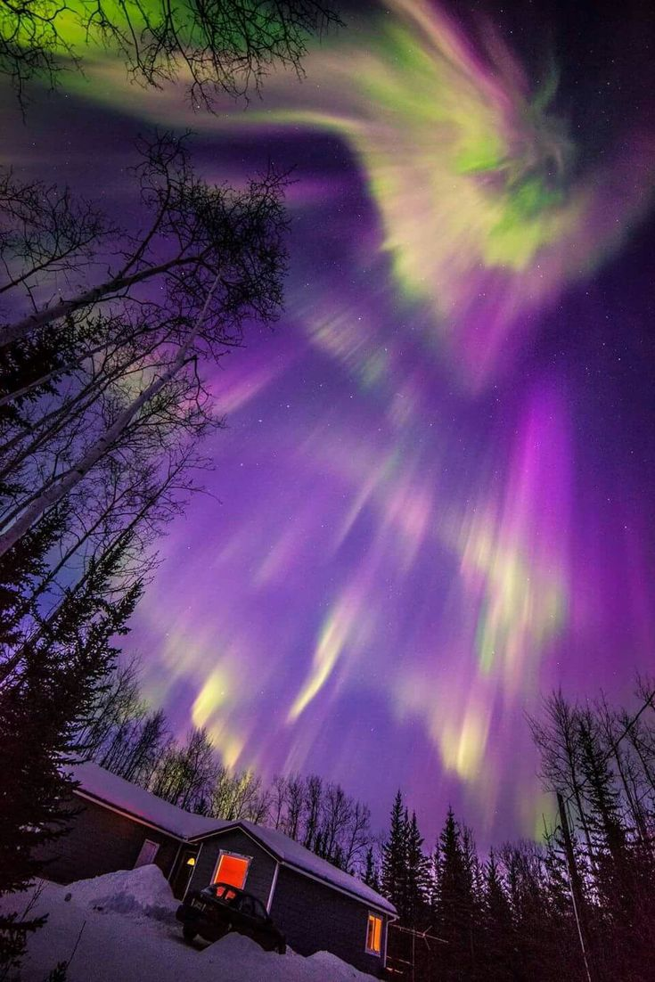 Magical view of the Aurora Borealis at Delta Junction, a city in the Southeast Fairbanks Census Area, Alaska