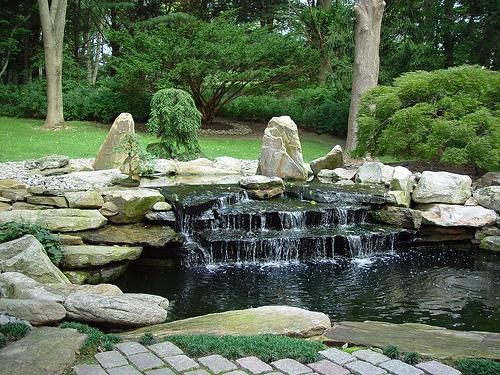 Best 25 pond design ideas on pinterest garden pond for Koi pond builders near me