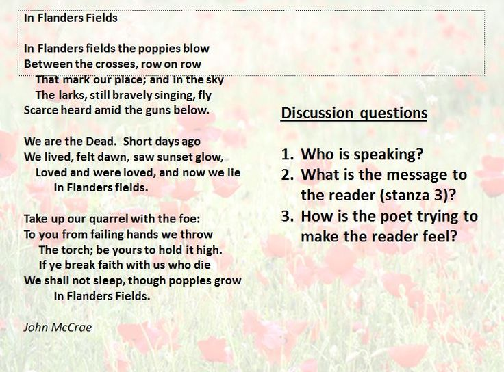 Remember the First World War through poetry; In Flanders Fields