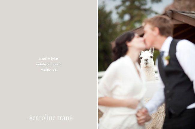 saddlerock ranch wedding   april   tyler