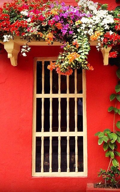 bold reds - Cartagena, Colombia
