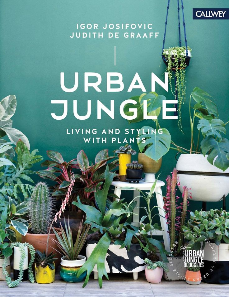 """Urban Jungle: Living and Styling with Plants is a source of inspiration, ideas and a manual for all of those who want to bring more plants into their home. The book guides the reader through different """"green"""" homes in five European countries and shows how beautiful, unique, creative and even artistic living with plants can …"""