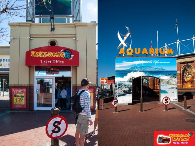 Hop on the bus at Stop 1, located at the Two Oceans Aquarium in the V&A Waterfront.  http://citysightseeing-blog.co.za/2014/08/28/a-tourist-in-my-home-town-cape-town/