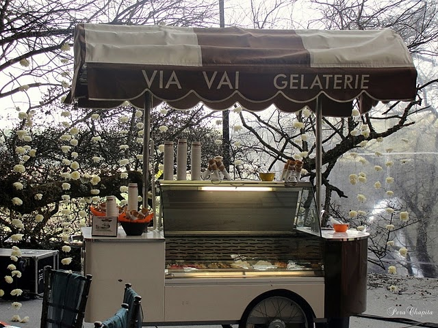 107 best images about food kiosk truck on pinterest behance coffee carts and trucks. Black Bedroom Furniture Sets. Home Design Ideas