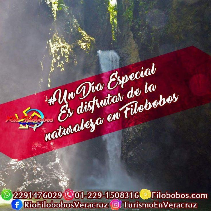 #UnDiaEspecial es disfrutar de la #naturaleza que #Filobobos #Veracruz nos ofrece. Conoce algunas opciones de #viaje en http://www.filobobos.com
