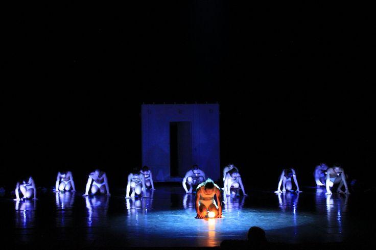 Szeged Contemporary Dance Company