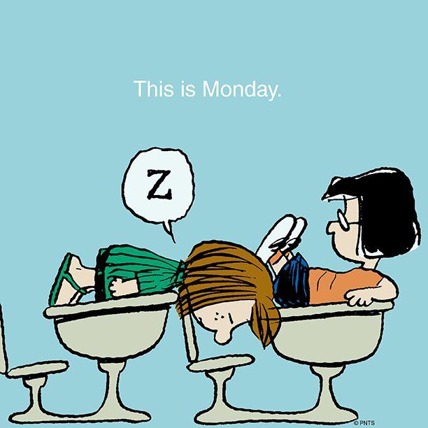 Mondays. pic.twitter.com/jX2K1yINaA