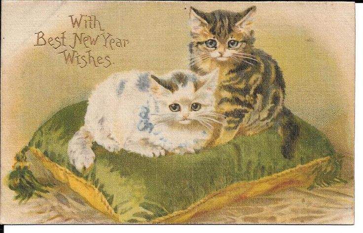 VTG Postcard Kittens on a Pillow With Best New Year Wishes Written Germany #NewYear
