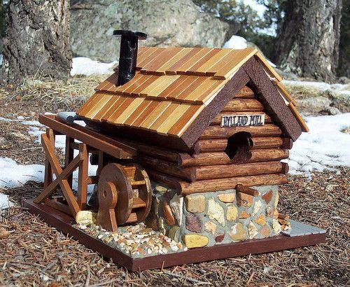 Cardinal bird with white head besides bird house woodworking plans