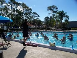 community preschool vero beach 17 best images about the map on parks 718