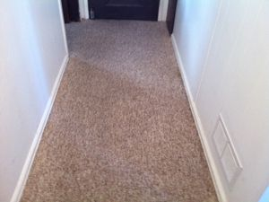 Results Heaven's Best Carpet Cleaning - La Grande OR After Photo #3