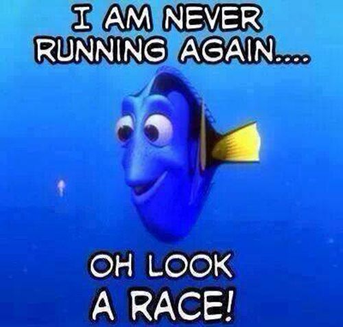 Running Humor #22: I am never running again. Oh, look, a race! - Nemo