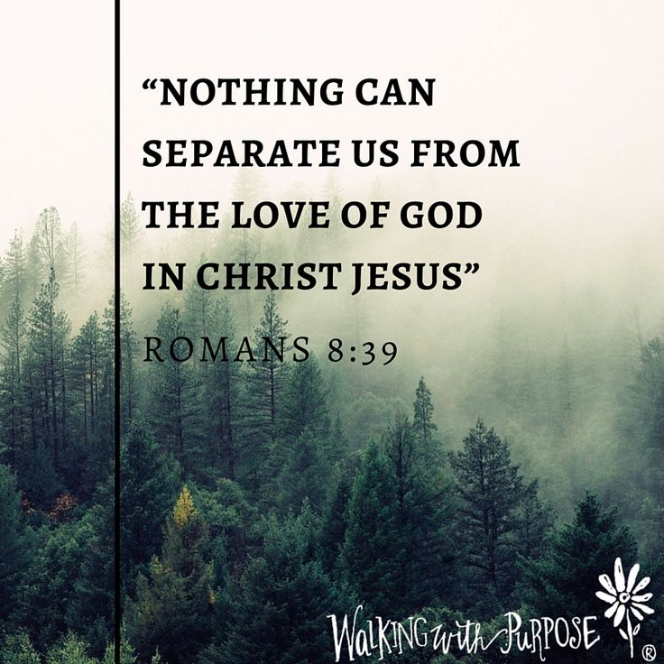 a separate peace biblical parallel It is ever okay for a married couple to separate what does the bible have to say about this when should a married couple separate they have a sense of peace.