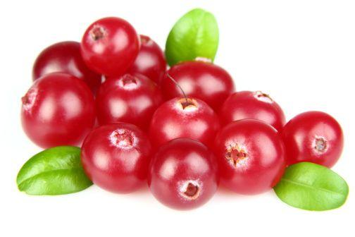 V posledních letech přibývá pěstitelů netradičních druhů drobného ovoce, mezi nimiž zaujme i odolná brusinka. Poradíme vám, jak se o ni postarat.