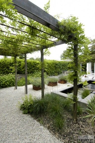 "This looks nice with Wisteria, but a ""living wall"" with Ivy would be awesome on one side of this. Would give some privacy too"