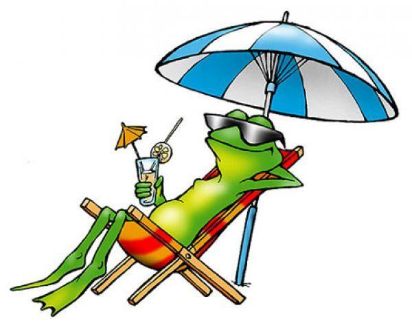 Картинка лягушка путешественница смешная, поздравительные открытки