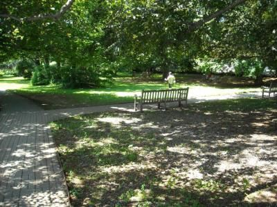 Greenwich, Connecticut park, where fourteen-year-old Margaret often speaks with Randy, the love of her life, in the Margaret of Greenwich(R) series.