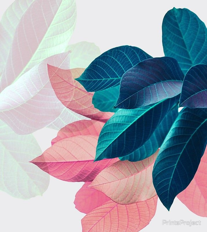 'Blue Pink Plant Leaf' Drawstring Bag by PrintsProject