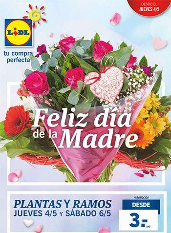 Catálogo Lidl del 4 al 10 de mayo - Especial Día de la madre -  Folleto Lidl en vigor del 4 de mayo al 10 de mayo de 2017, con muchas ofertas en alimentos y productos Lidl. Destacamos el especial día de la madre desde el jueves 4 de mayo.  Plantas y ramos disponibles el jueves 4 y el sábado 6 de mayo (orquideas, bromelia, ficus, centro floral, lirios... #CatálogosLidl, #Catálogosonline  #Cien, #SilverCrest, #Suddenly Ver en la web : https://ofertassupermercados.es/c